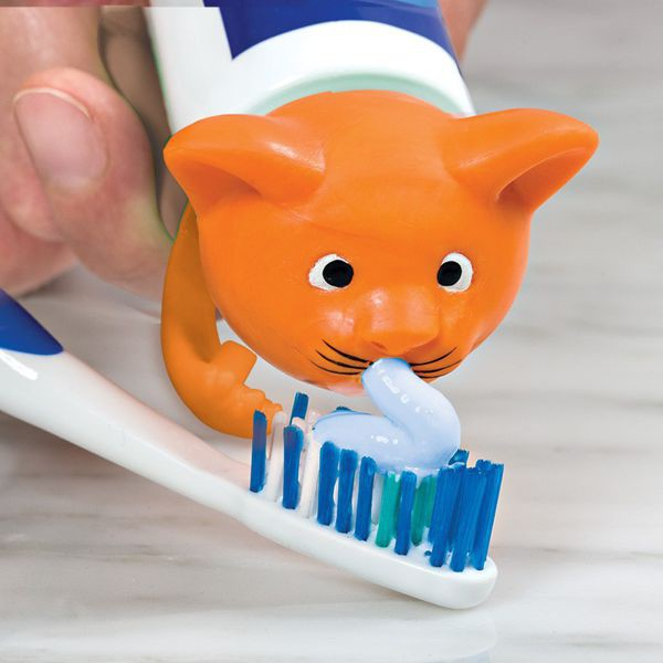 The cap on the<br>toothpaste - kitten