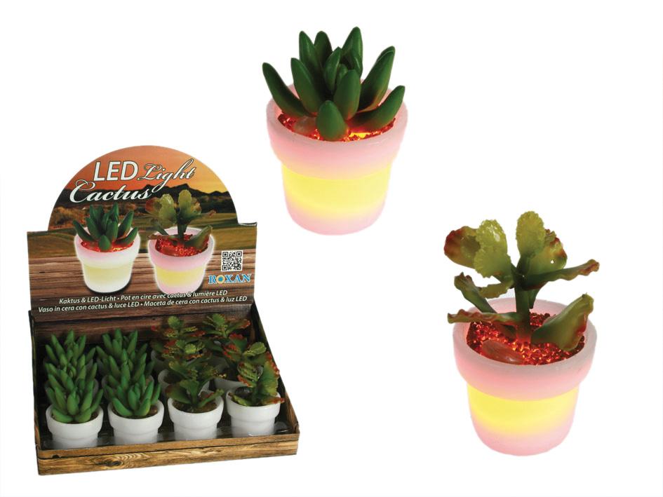 LED-Licht Kaktus -<br>12 Stück