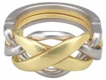 Hanayama Huzzle Cast Ring- puzzle level 4/6