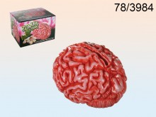 Brain Money Box